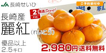 麗紅  優2.5キロ
