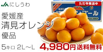 清見オレンジ5kg