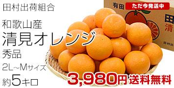 清見オレンジ秀品