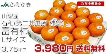 L~Mサイズ柿