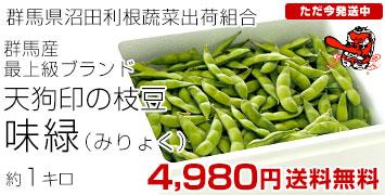 味緑1キロ