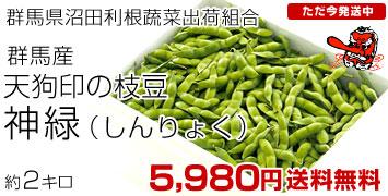神緑2キロ