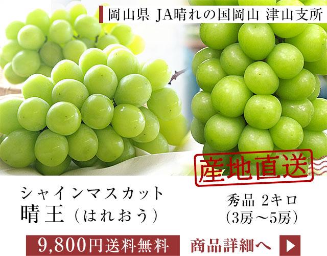津山シャイン2kg