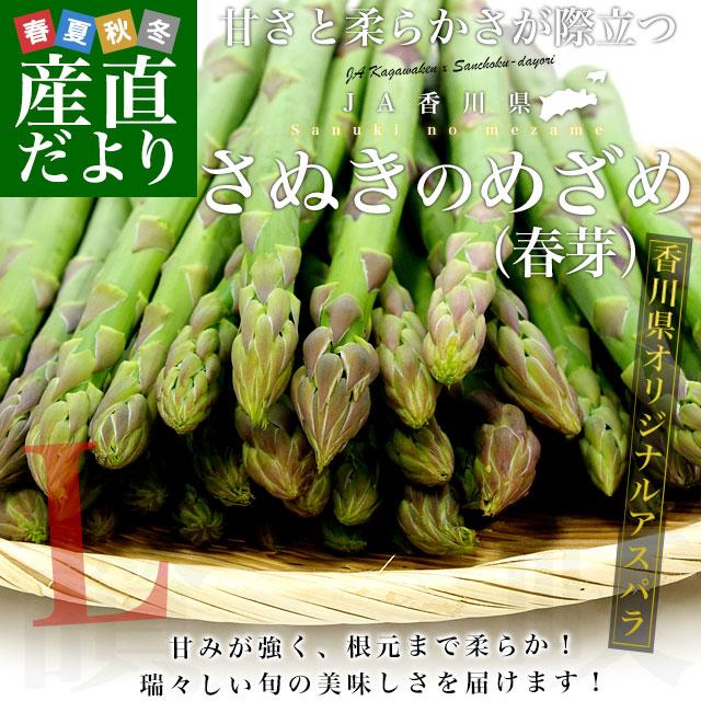 さぬきのめざめ (夏芽)