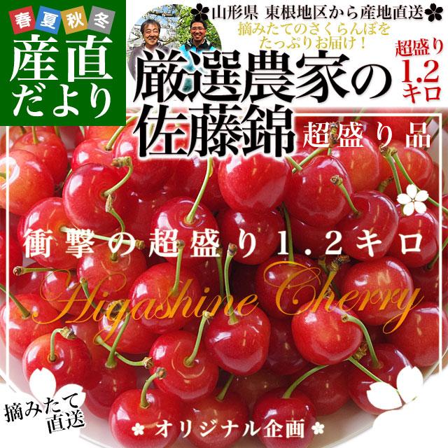 厳選農家佐藤錦M