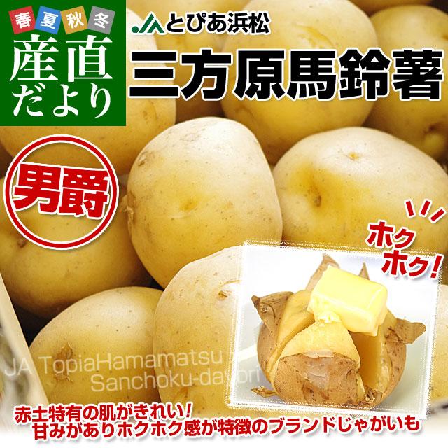 三方原馬鈴薯S