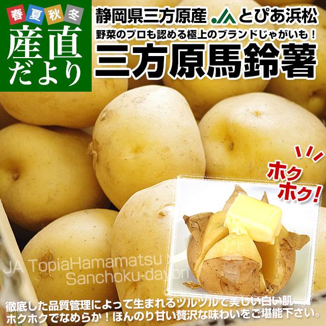 三方原馬鈴薯 秀品 LからMサイズ