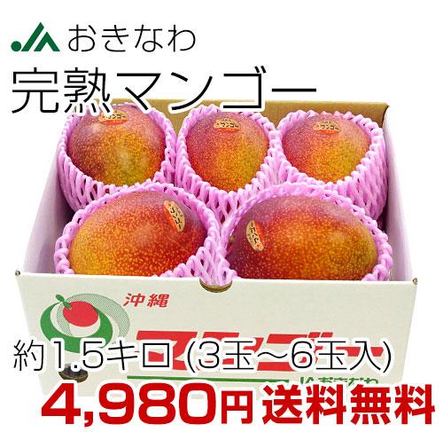 沖縄マンゴー 1.5キロ