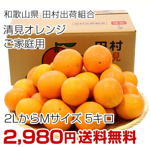田村の清見オレンジ