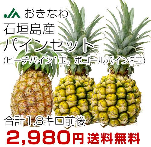 沖縄パインセット