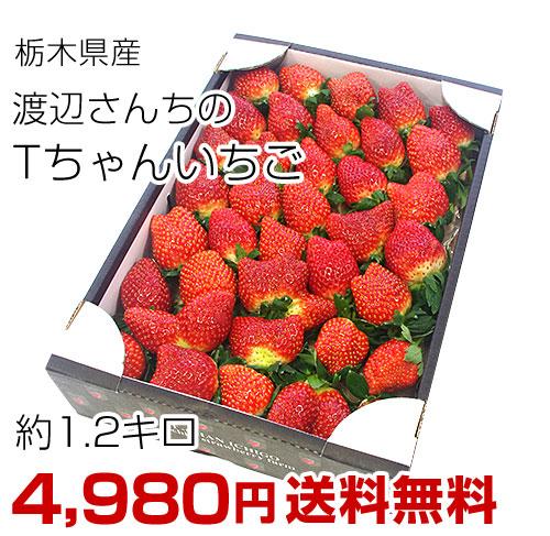 Tちゃん いちご 1.2キロ