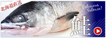 北海道直送の鮭コーナー