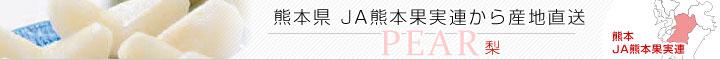 JA熊本果実連