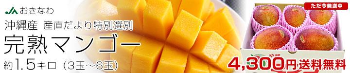 完熟マンゴー1.5キロ