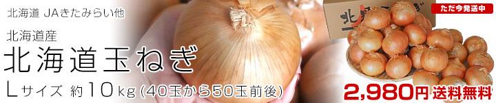 北海道玉ねぎ10キロ