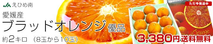 ブラッドオレンジ2kg