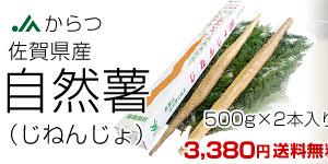 500g×2本