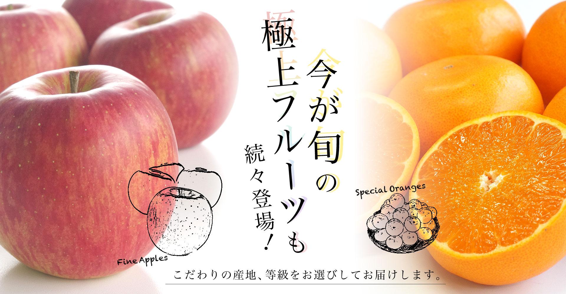 旬の柑橘&フルーツ