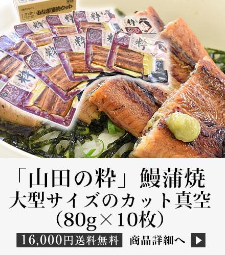 「山田の粋(やまだのいき)」(大型サイズのカット真空80g×10枚)