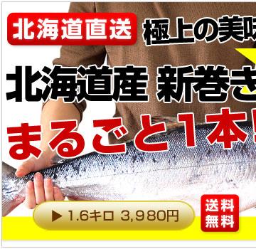 1.6kg鮭