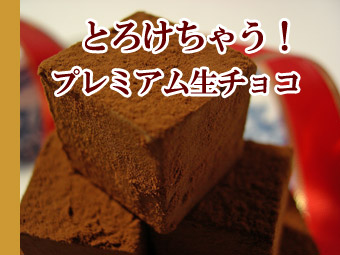 プレミアム生チョコレート
