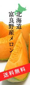 北海道富良野産メロン 送料無料