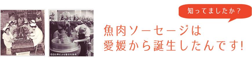 魚肉ソーセージは愛媛から誕生したんです!