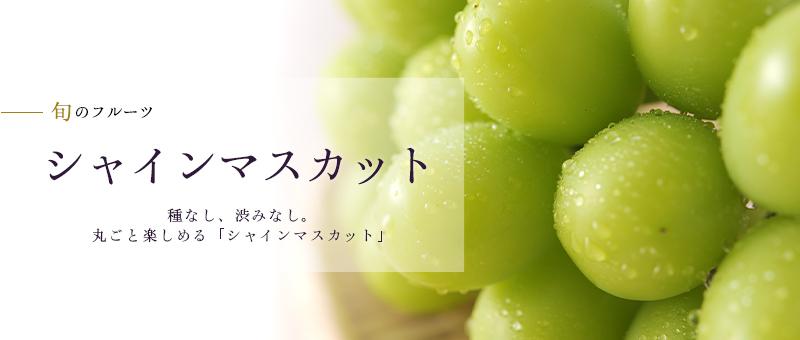 京橋千疋屋 シャインマスカット