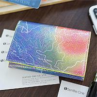 PELLE MORBIDA(ペッレ モルビダ) 名刺入れ・カードケース PMO-BA305CC