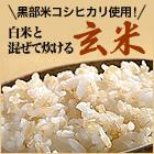 白米と混ぜて炊ける玄米