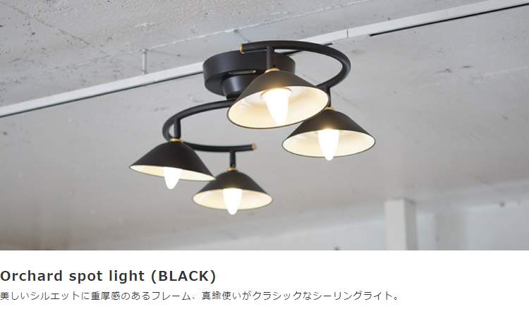 Orchard spot light (BLACK)