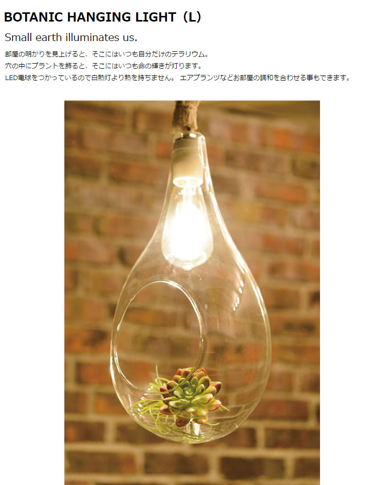 Another garden BOTANIC HANGING LIGHT ボタニックハンギングライト [L]