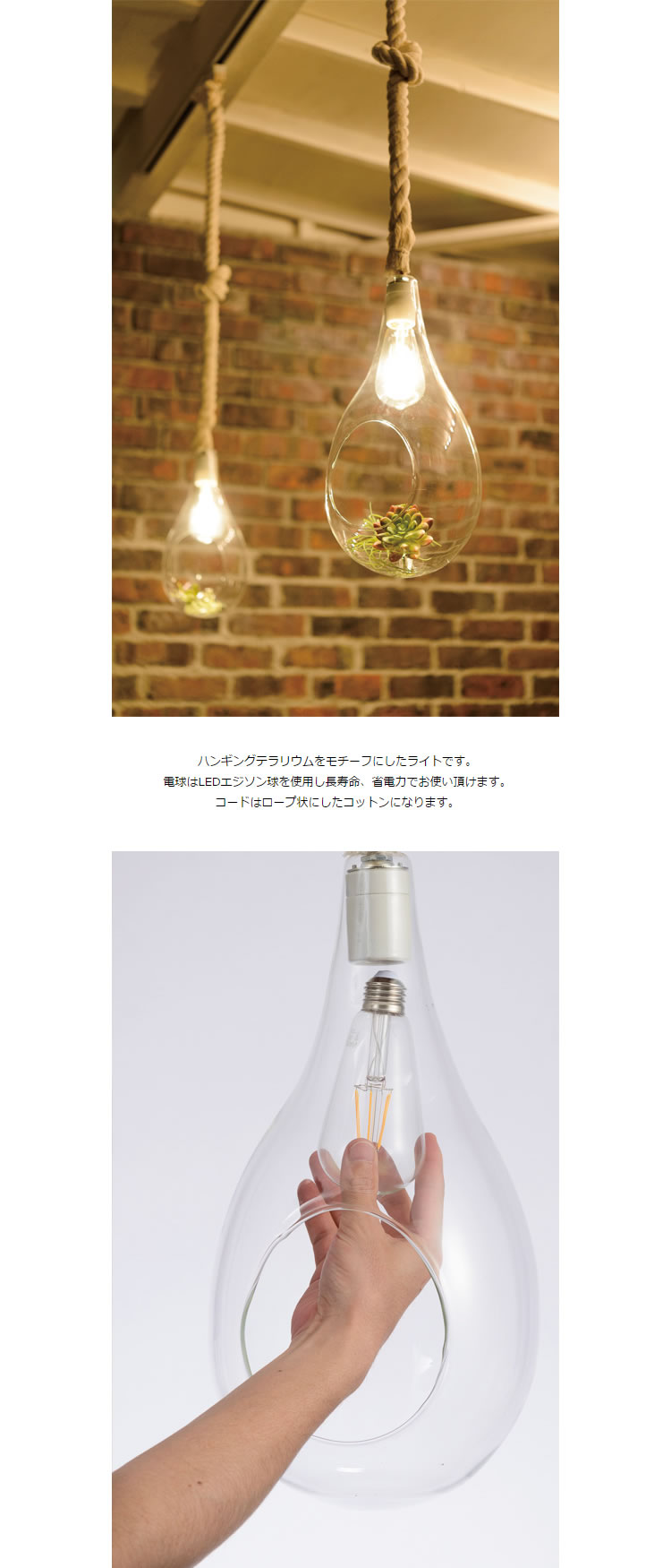 Another garden BOTANIC HANGING LIGHT ボタニックハンギングライト [L]