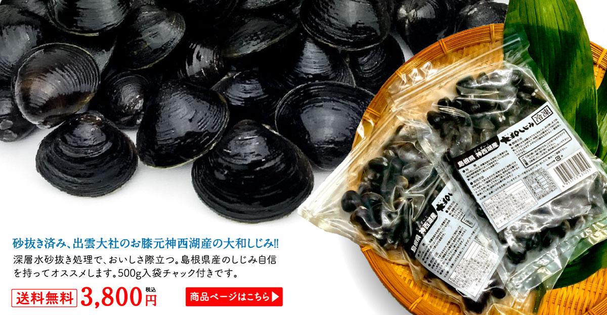砂抜き済み、出雲大社のお膝元神西湖産の大和しじみ!!