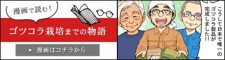 漫画で読むゴツゴラ栽培までの物語