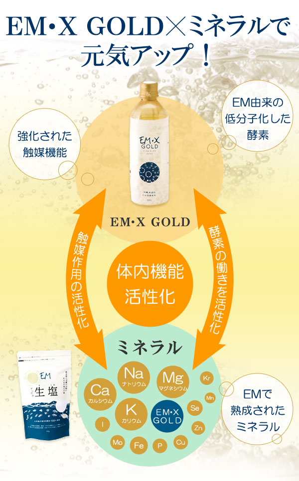 EM・X GOLDとミネラルで元氣アップ!