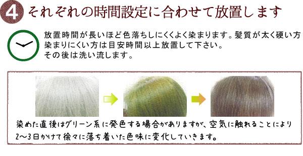 グリーンノート白髪染めの方法4