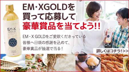 EMXゴールドプレゼント企画