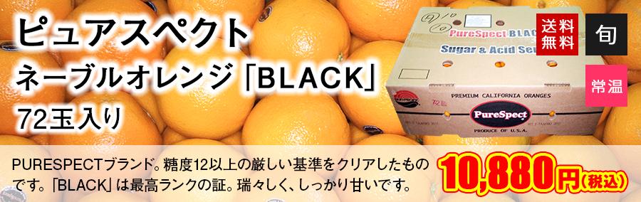 【送料無料】ピュアスペクト ネーブルオレンジ「BLACK」72玉入り  | 生鮮食品直送便 楽天市場店