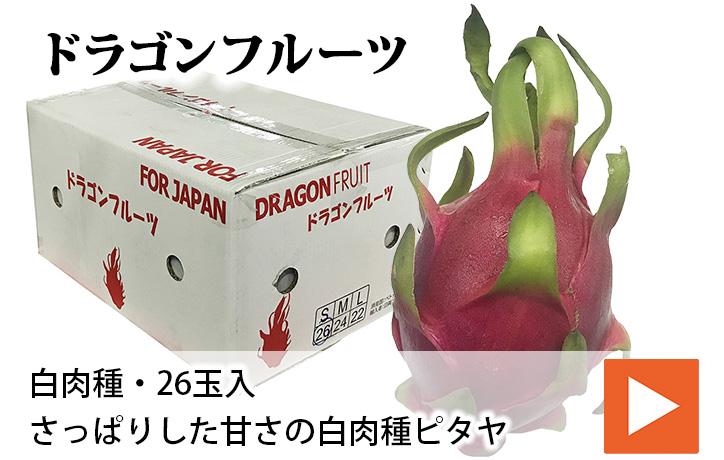 【送料無料】ベトナム産 ドラゴンフルーツ 白肉種 26玉| 生鮮食品直送便 楽天市場店