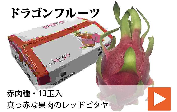 【送料無料】ベトナム産 ドラゴンフルーツ 赤肉種 13玉 | 生鮮食品直送便 楽天市場店