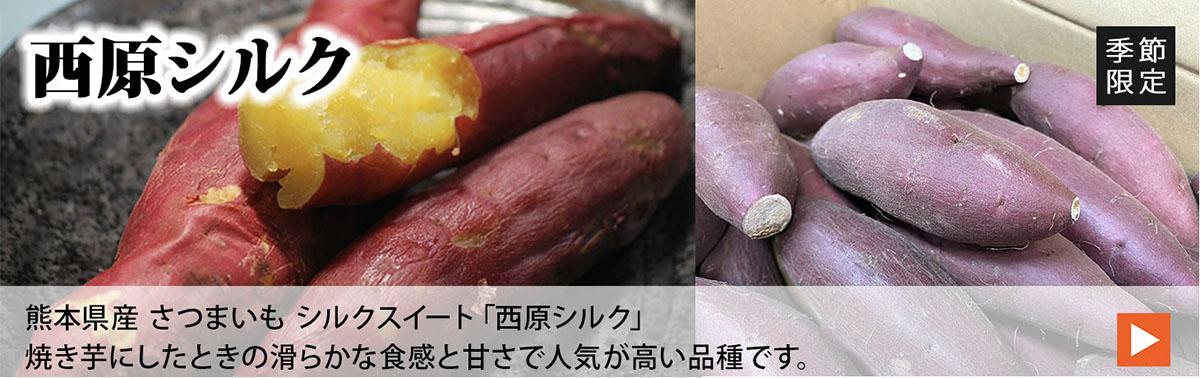 熊本県産シルクスイート Mサイズ 5kg | 生鮮食品直送便 楽天市場店