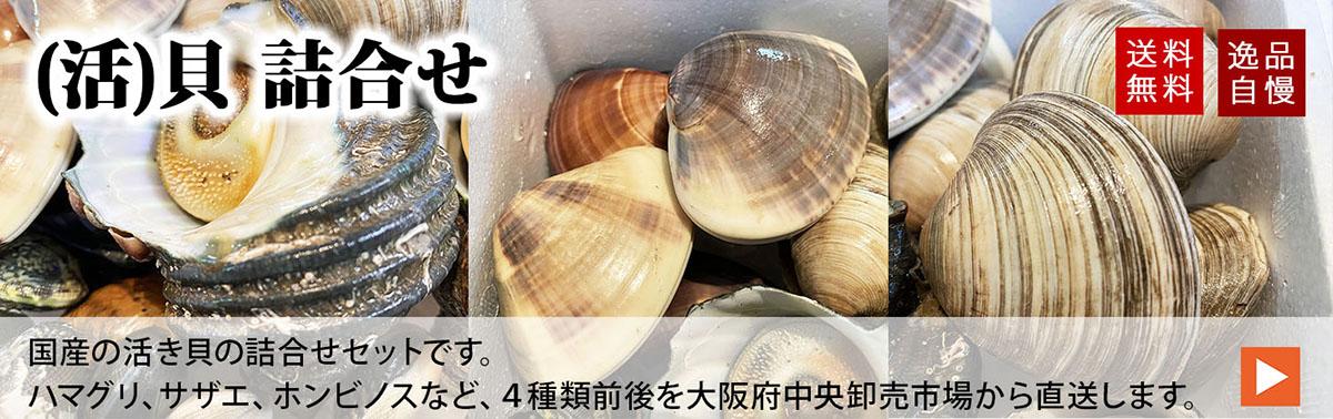【送料無料】活き貝詰合せセット | 生鮮食品直送便 楽天市場店