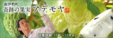 フルーツ 奇跡 アテモヤ 三重県 生産者