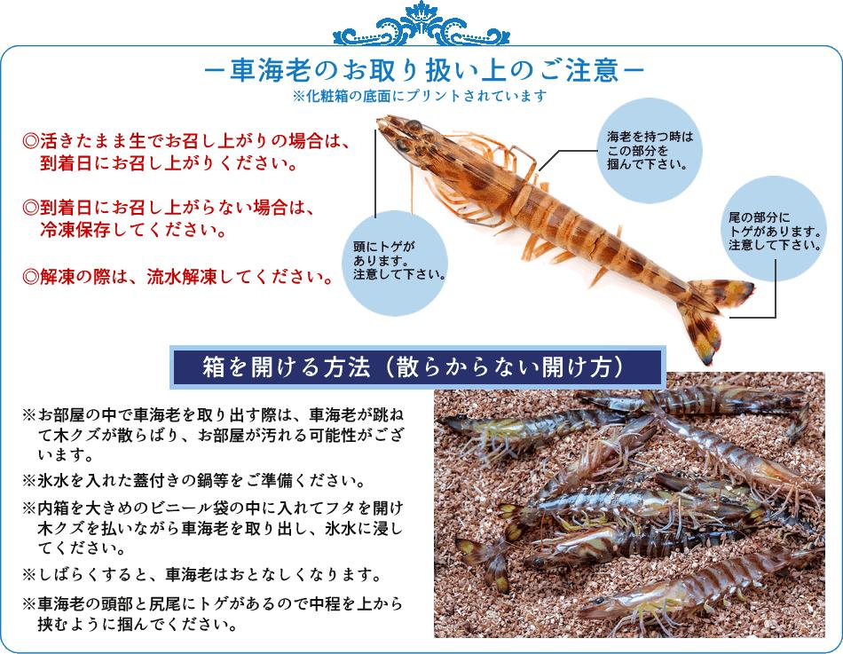 車海老の食べ方