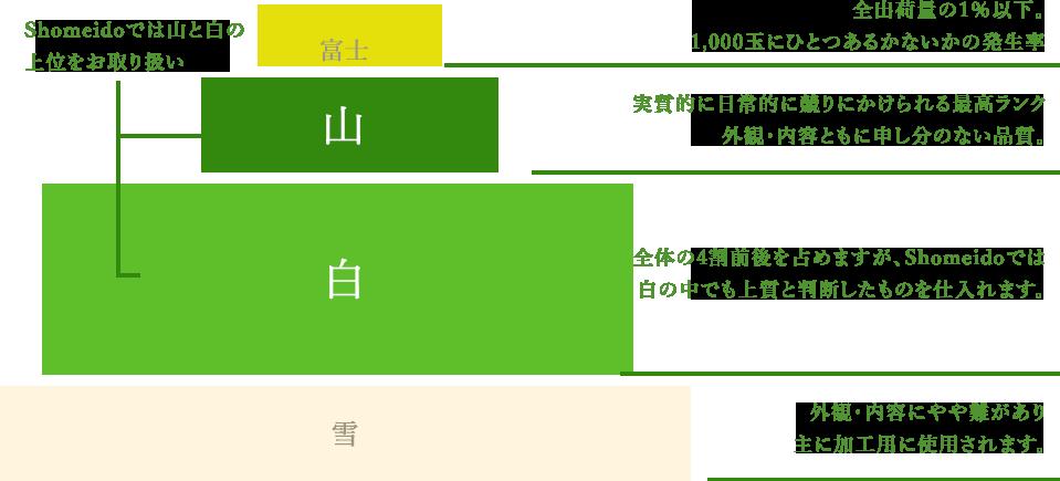 図:クラウンメロンの等級(Shomeidoでは山と白の上位をお取り扱い)