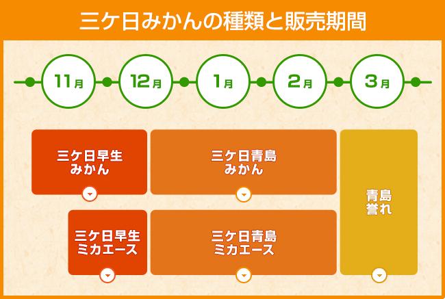 Shomeidoの三ケ日みかんは安心!