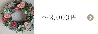 〜3,000円