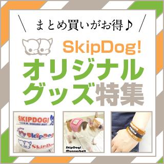 SkipDog!���ꥸ�ʥ륰�å��ý�