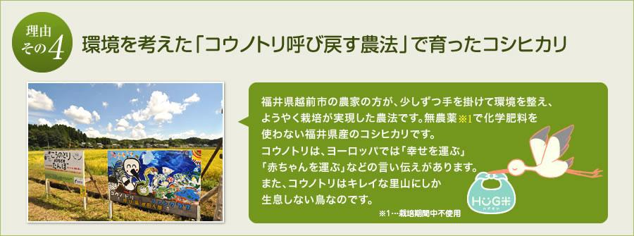 4.環境を考えた「コウノトリを呼び戻す農法米」で育ったコシヒカリ。